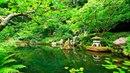 Deep Sleep Music and Nature Sounds - Zen Garden HD Relaxing