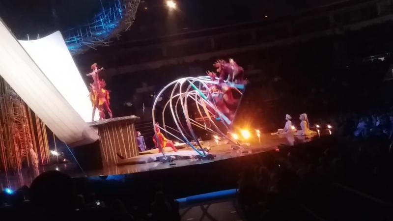 Cirque du Soleil Varekai Цирк дю Солей