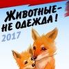 """Всероссийская акция """"Животные не одежда"""".Воронеж"""