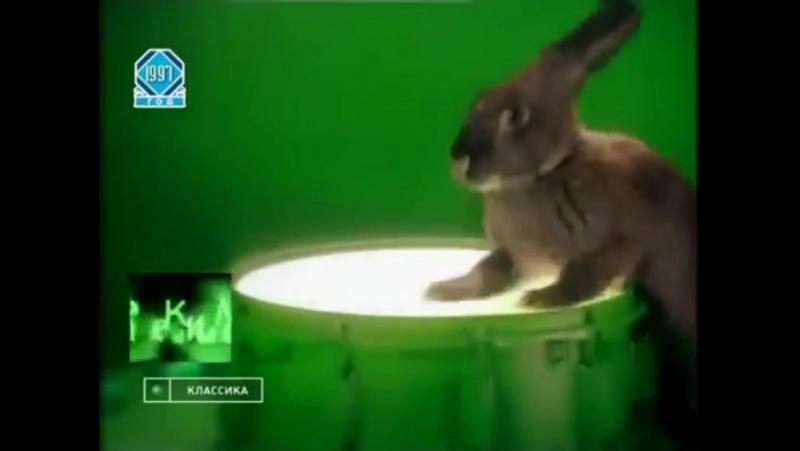 Перед и после рекламная заставка (НТВ, 01.11.1997 - 09.10.1998) Кролик