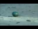 [v-s.mobi]клип Грозовые ворота, война на Кавказе.mp4