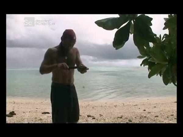 Наука выживать - Южная часть тихого океана