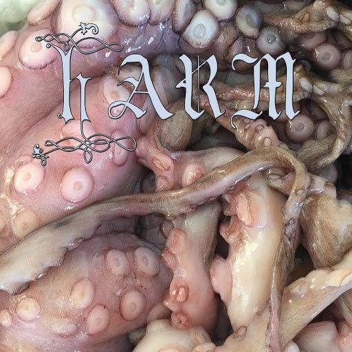 IO Echo альбом Harm