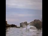 H&ampM Man - Summer Dive