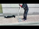 Небольшой обзор мобильной приставной лестницы Shtok Military