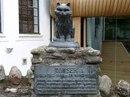 Таузер – заслуженная кошка Шотландии…