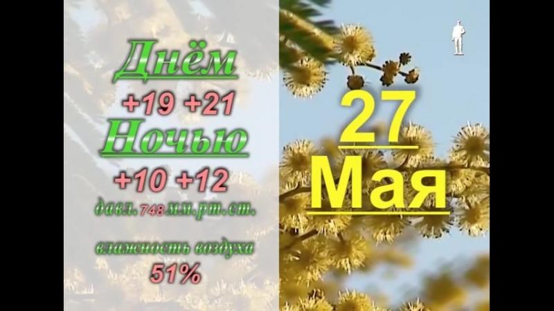 Прогноз погоды на выходные в Донском