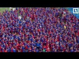 Красочный карнавал в Бразилии