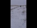 зимой в деревне свои покатушки