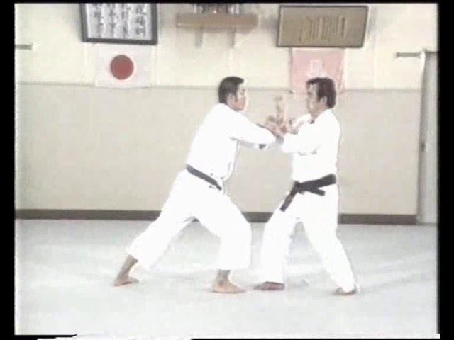 Essence of Wado Ryu Karate T Suzuki No2