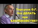 Торсунов О.Г. Что ДЕЛАТЬ при БЕСПОКОЙСТВЕ?