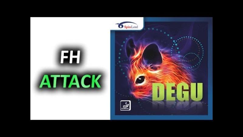 FH attack SPINLORD Degu 2 0 mm short pips technique техника коротких шипов