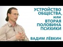 Вадим Лёвкин - Устройство общества, или Вторая половина психики