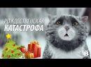 Рождественская катастрофа Mogs Christmas Calamity