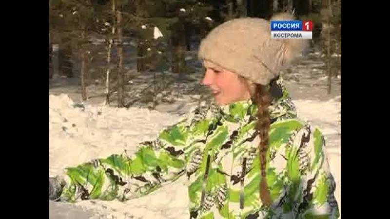 В Костромской области начался зимний маршрутный учет диких зверей