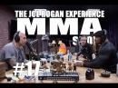 JRE MMA Show 17 with Yoel Romero Joey Diaz