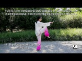 48 Form Tai Chi Demonstration Master Amin Wu