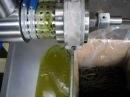 Hemp seed oil mechanical pressing olio semi canapa spremitura meccanica