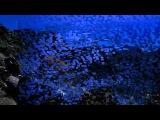 Nicholas Gunn - Canyon Nights