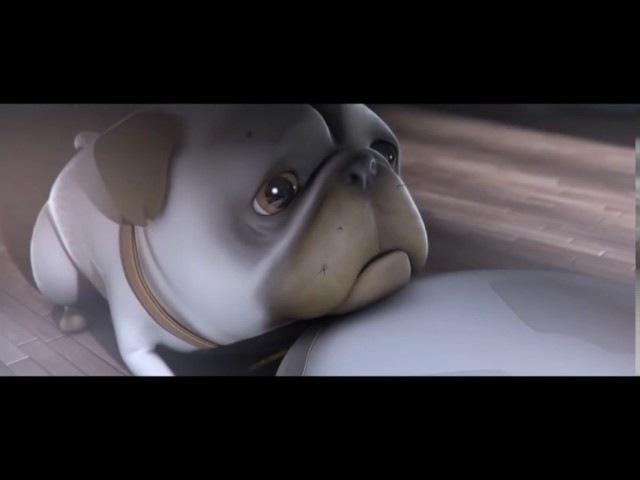 Короткометражный мультфильм 🐕 🐩 🐈 🐇 Мопс Дастин.
