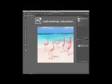 Patch Tool (Заплатка) Photoshop Education