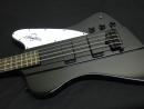 Gibson thunderbird Bass offset