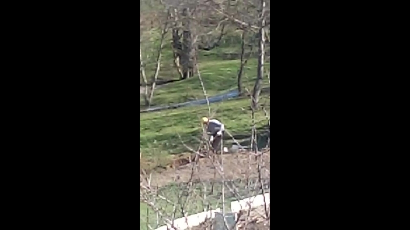 Позор для дагестана. Табасаранский чмошник которые русские зачморили работает на огороде