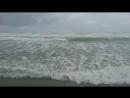 Тихий океан, пляж Tauranga, Северный остров Новой Зеландии