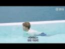 Jimin swimming like a puppy