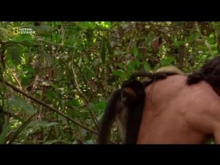 Инстинкт выживания — Primal Survivor 09_Ultimate Guide