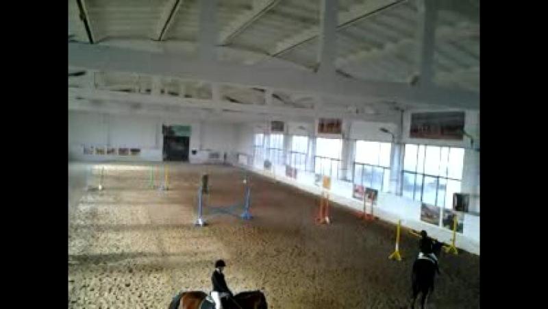 соревнования лошадей конкур Волжский 2015 год