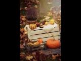 Осень - это кофе с корицей, кленовые листья, разноцветные, как часть детского рисунка, тёплые, нежные плюшки с ванилью и тонкий