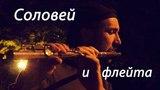 Соловей и флейта Nightingale &amp flute Ивков Сергей