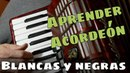 APRENDER ACORDEON Clase 41: El ritmo negra/blanca en la melodía: Cancion Love's old sweet song