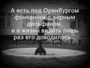 ♛ Чёрный Дельфин ♛ (Текст_Lyrics)