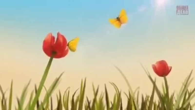 Все мы бабочки в руках судьбы.