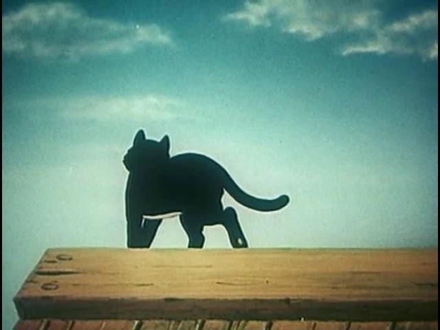 Высокая гора (1951)