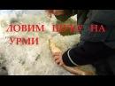 Зимняя РЫБАЛКА на Амуре. р. УРМИ. Пешня ТОНАР ОБЗОР.
