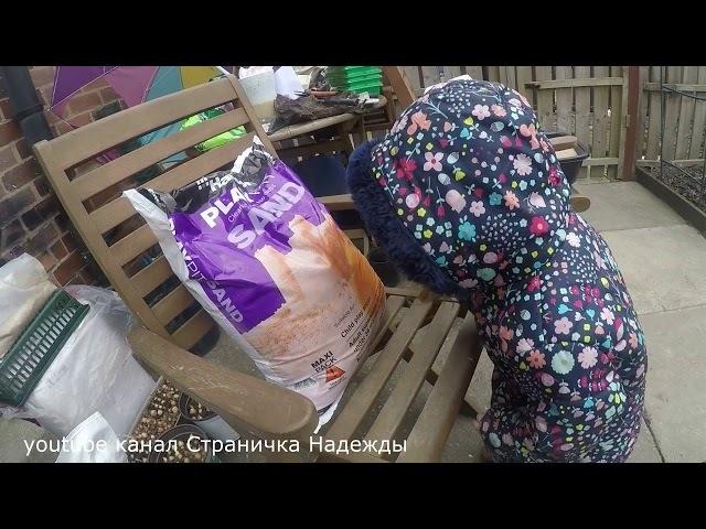 Дела садовые - Дела Февральские Распаковка нужных вещей