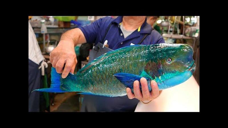 日本路邊小吃 - 巨大的拿破崙魚 生魚片 Японская уличная еда - сашими из рыбы-Наполеон