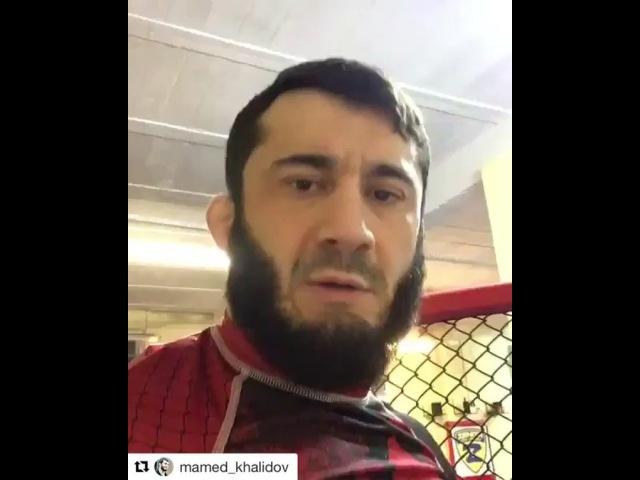 "TEAM KHALIDOV | Mamed Khalidov on Instagram: ""Repost @mamed_khalidov with @get_repost ・・・ 🇵🇱Reportaż z miejsca wydarzenia🎥 🇷🇺Репортаж с места собы..."