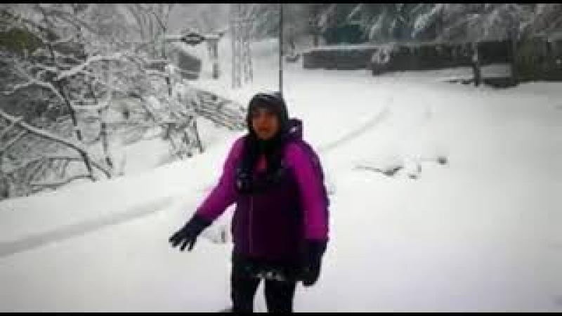 Live Footage of Today Heavy Snow Falls in Nathia Gali Winter Season 2017
