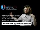 Станислав Дробышевский Чем кроманьонцы отличались от неандертальцев