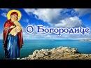 О Богородице. Об уповании на Бога и о благодарности к Нему - Святитель Николай Сербский 4K🌺🦋