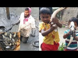 Traditional Fishing Fresh Country Fish Always Makes Us Hungry Big Net Trap Catching Fish