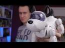 МОЯ СОБАКА - РОБОТ! Silverlit PupBo