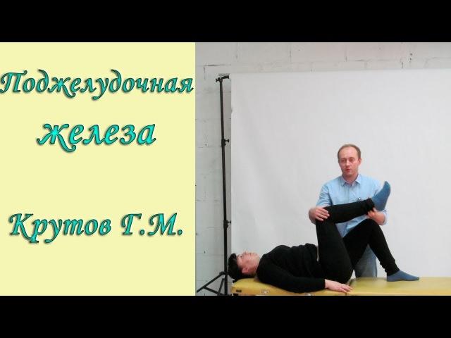 Семинар Григория Михайловича Крутова, Биохимия-2 Эндокринная система, кинезиология, фрагмент 1