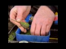 Nick Speed Winter Method Feeder Fishing
