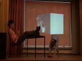 22-Вет - Танец фаната Кайли Миноуг