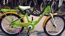 Внешний обзор велосипеда Stels Pilot 220 Lady 20 V010 2018